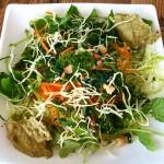 Salade Vegan protéinée